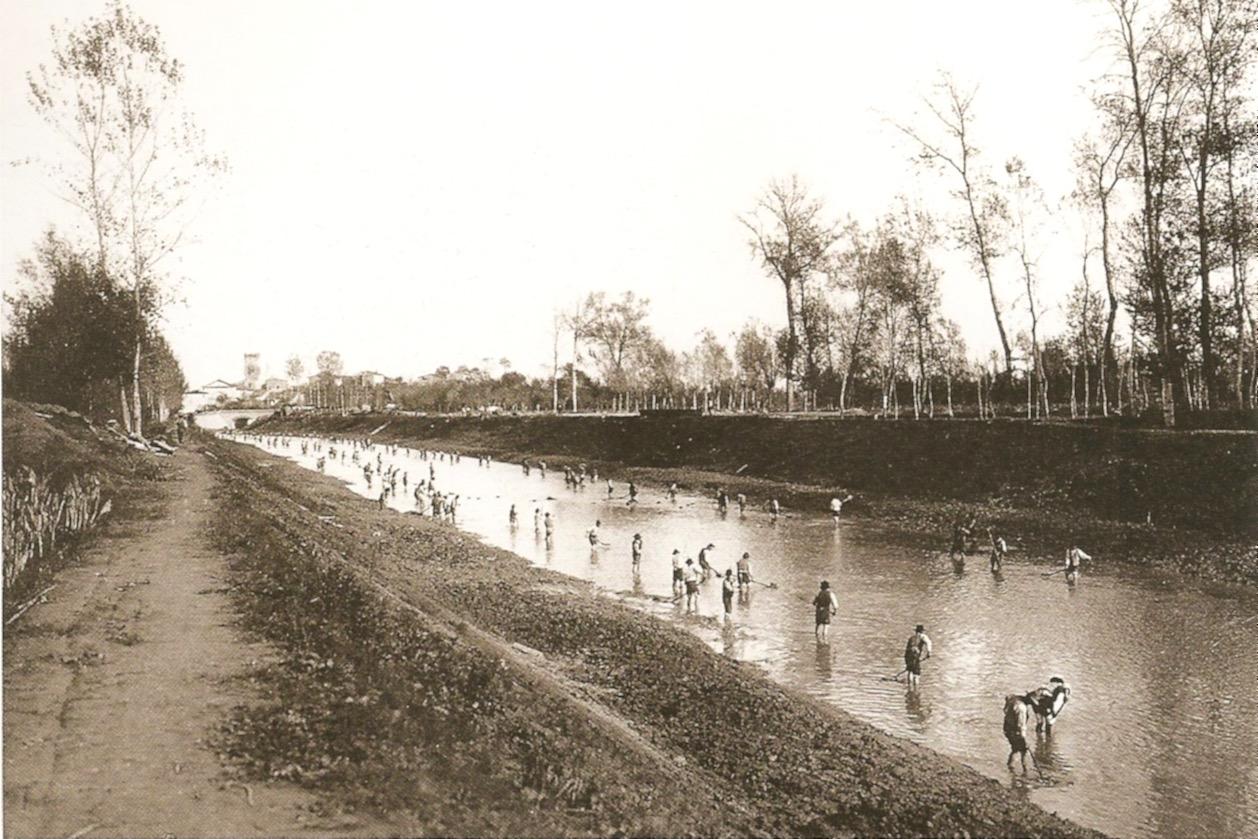 Bonifica di Bientina. Pulizia di un tratto di canale durante la ''levata'' d'acqua d'autunno
