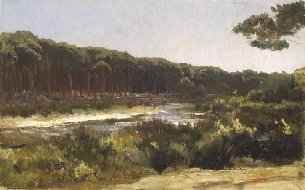 Il fiume Arno a San Rossore