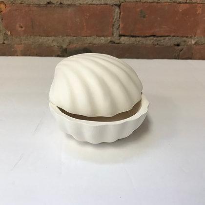 Small Shell Box - Kit
