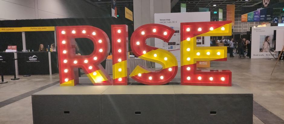 Hummingbird Analytics' Presence in RISE Conference 2019