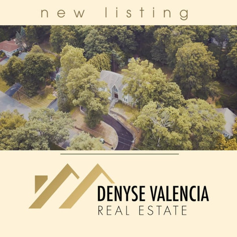 Real Estate Teaser Video: Denyse Valencia