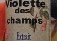 Violette des Champs