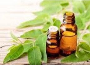 Eucalyptus Pure Essential Oil 6ml