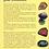 Thumbnail: Les cristaux pour débutants