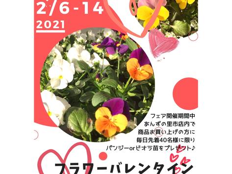 2/6-14フラワーバレンタインフェア
