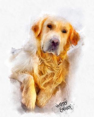 Dog Final Mykonos Low.jpg
