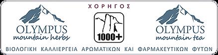 ΧΟΡΗΓΟΣ.png