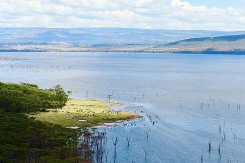 lake nakuru.jpg