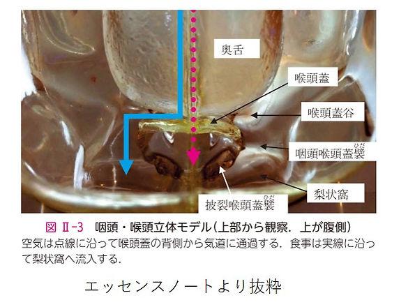 空気と食事の流れ2.jpg