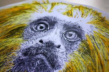 Third Man Monkey - Third Man Records - J