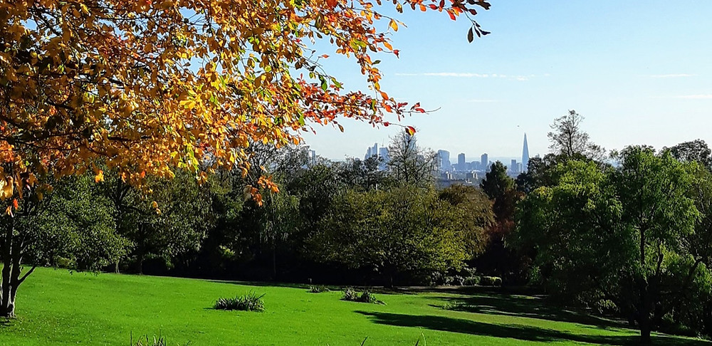 London skyline from Waterlow Park in Highgate - a popular place for dog walkers.