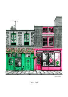 The Liverpool Collection • Lark Lane