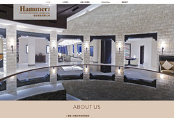 hamme furniture website