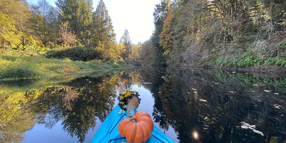 Thanksgiving Day Morning Paddle