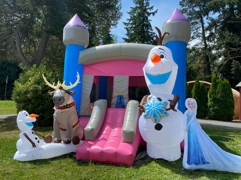 Frozen with Pink Single Slide bounce house rental