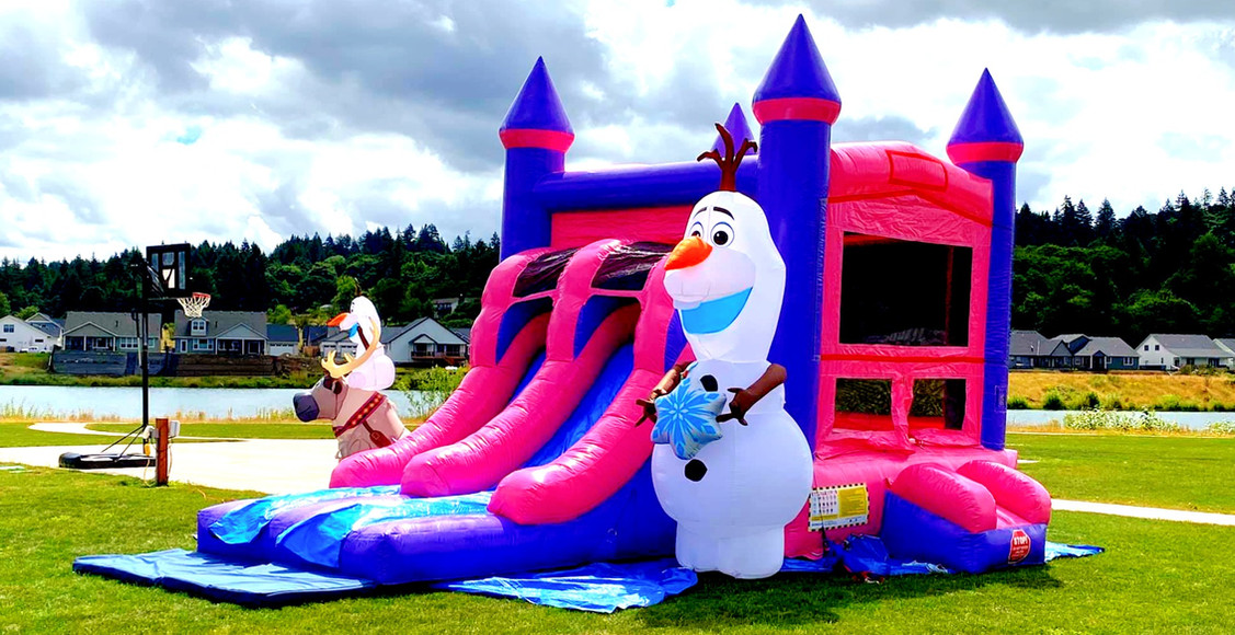 Frozen with XL Pink Double Slide jumper