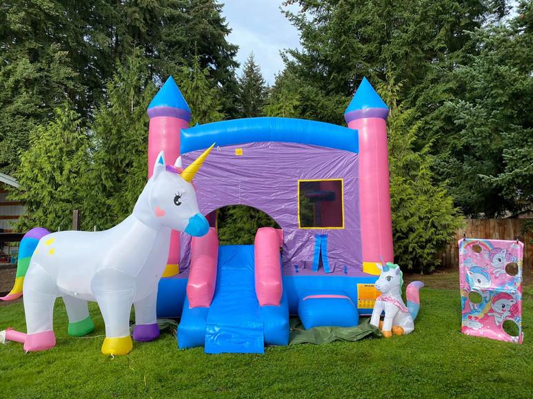Unicorn with purple single slide bounce rental