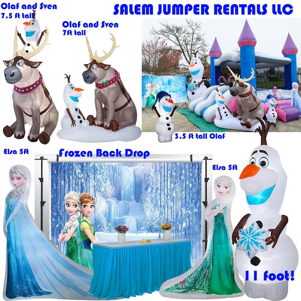 Frozen Package.jpg