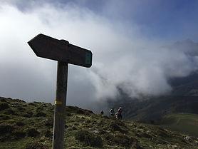 photo stage de trail 8.jpg