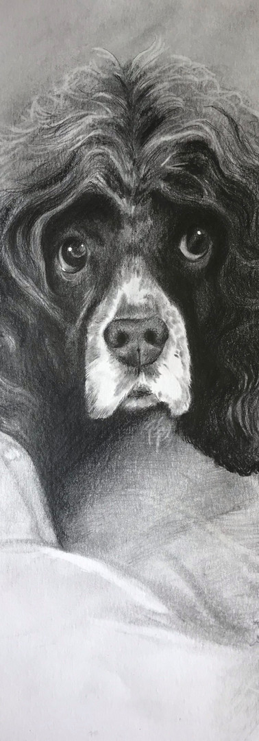 Commission of a Beloved Pet