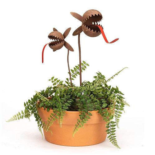Alfresco Gardenware Carnivorous Plant Rusty Set
