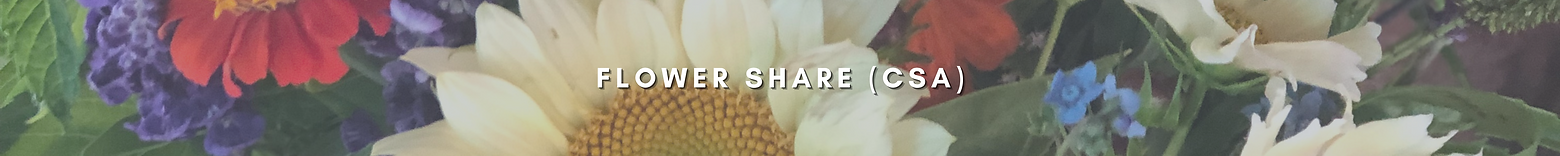 Flower Share Page Header (1).png