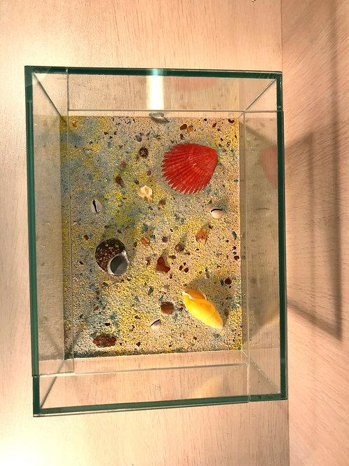 Арена для формикария с натуральными минералами и раковинами. арт. 0067