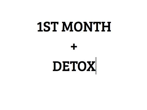 FF PROGRAM 1st month plus Meal tracker