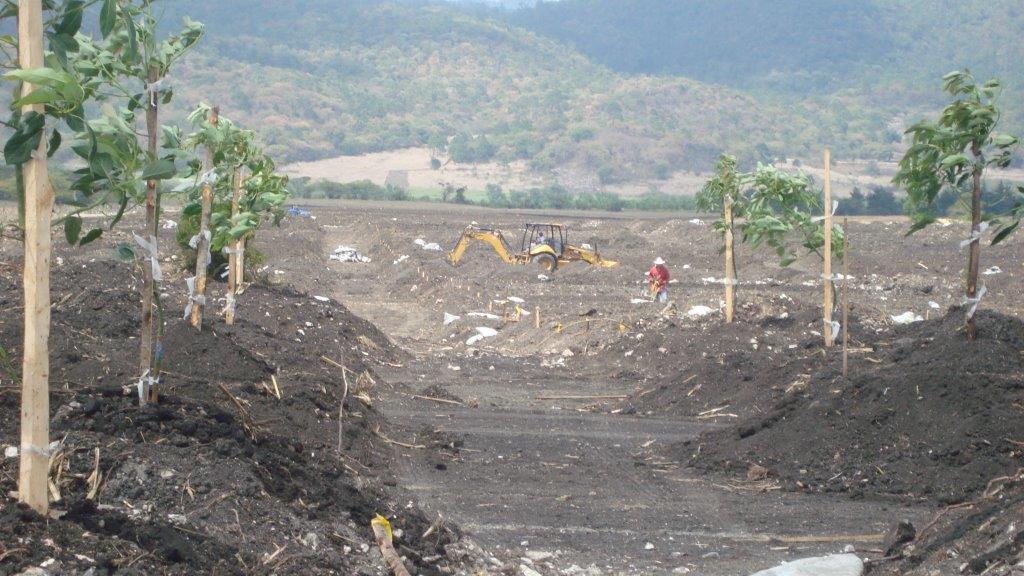 Huertas Boloma Chiapas