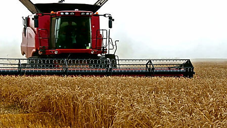 Sistema de gestão para Agronegócio, Agroindústria, Agribusiness, Empresas agrícolas, Empresas de pecuária, Agroindústrias, Florestadoras e reflorestadoras, Beneficiadoras de grãos e cereais, Empreendimentos sucroenergéticos, Empreiteiros rurais, Consultorias de engenharia e agronomia, Empresas de construção e eletrificação rurais, Engenharia de águas e solos, Gestão de mecanização agrícola, software de gestão