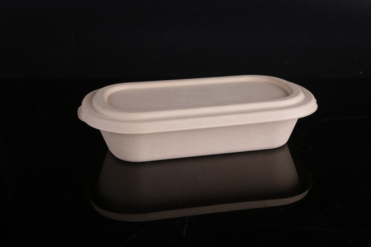 disposable_food_box_0