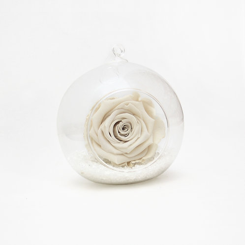 Ivory Infinity Rose in Bauble