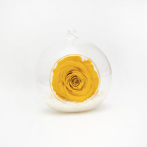 Yellow Rose in Bauble