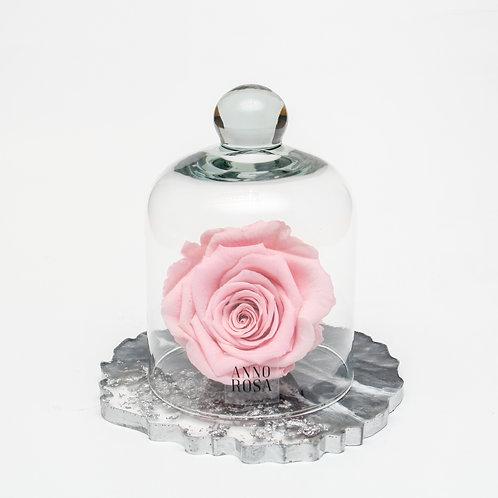 RESIN BELLE SINGLE INFINITY ROSE - PINK