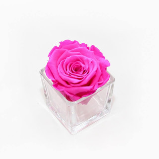 preserved rose, infinity rose, forever rose, pink roses, pink rose, eternal rose, eternity rose, roses that dont die, bedroom decor, gift ideas, girls gift ideas, gift ideas for girls, great gift ideas, great gift ideas for girls