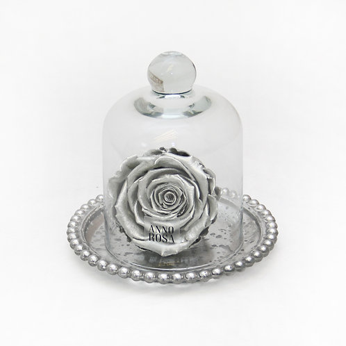 Silver Preserved Rose That Lasts A Year
