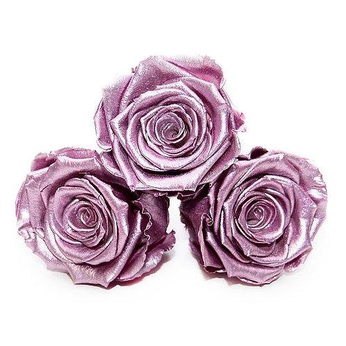 INFINITY ROSES - METALLIC PINK