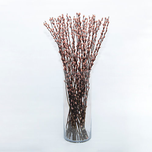 PINK  PUSSY WILLOW (STEMS ONLY NO VASE)