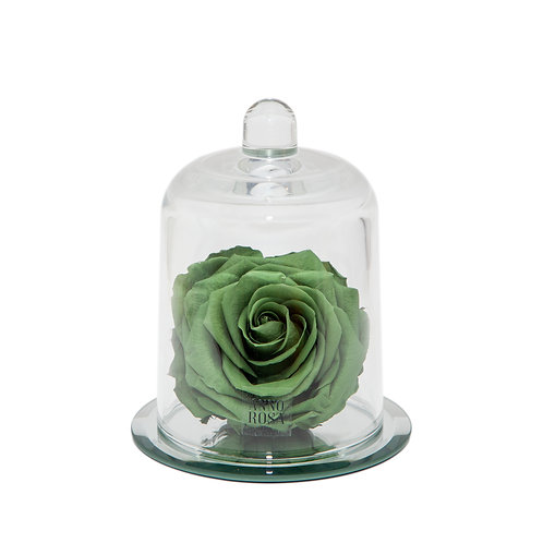 DELUXE SAGE GREEN MIRROR BELLE SINGLE INFINITY ROSE
