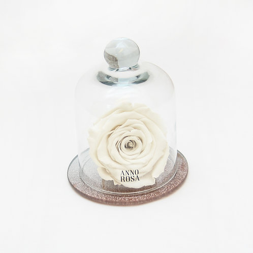 Ivory Eternity Rose that lasts for a year