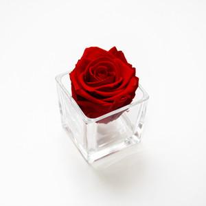 preserved roses, infinity roses, red roses, rose, interior design, home design, design ideas, bedroom, girly gifts, girls gifts, bedroom ideas, red roses