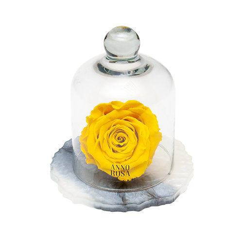 MARBLE BELLE SINGLE INFINITY ROSE - YELLOW