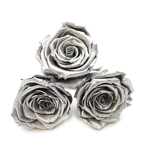 INFINITY ROSES - METALLIC SILVER