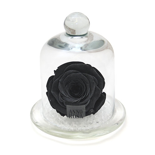 CLASSIC BELLE SINGLE INFINITY ROSE - BLACK