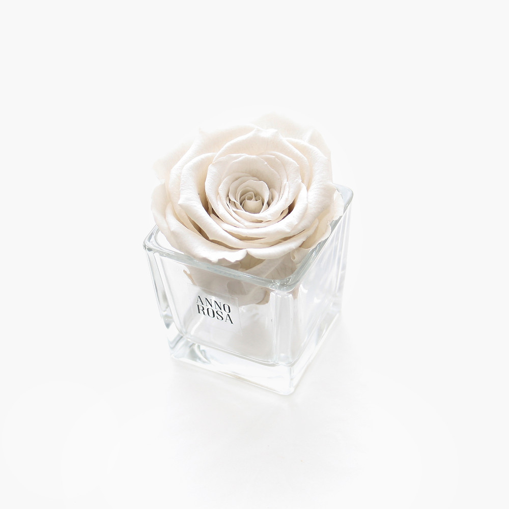 year long roses, forever roses, roses, infinity roses, roses for decor, decor ideas, decor ideas, ideas for decor, ivory decor, ivory, ivory infinity roses, infinity roses, roses for decor, decor ideas, roses, forever roses, home decor, home style, home office idea, home office decor, bedroom decor, bedroom