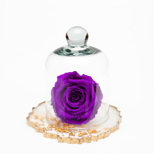 RESIN BELLE SINGLE INFINITY ROSE - VIOLET
