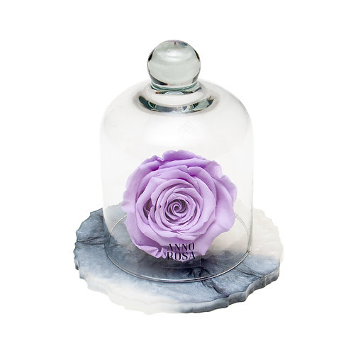 MARBLE BELLE SINGLE INFINITY ROSE - LILAC