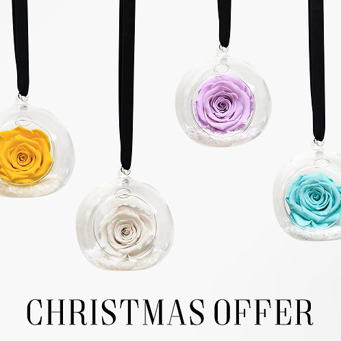 HANGING INFINITY ROSES - CHRISTMAS BAUBLE OFFER