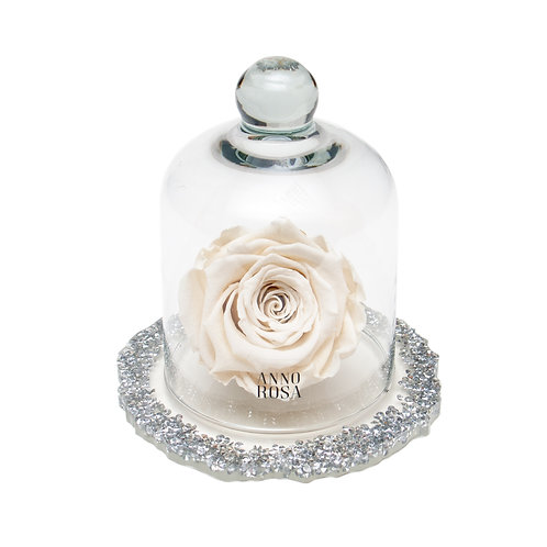 DIAMANTE BELLE SINGLE INFINITY ROSE - IVORY