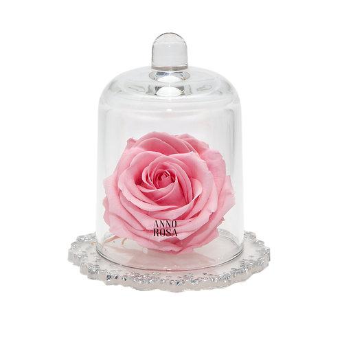DELUXE PINK DIAMANTE RESIN BELLE SINGLE INFINITY ROSE